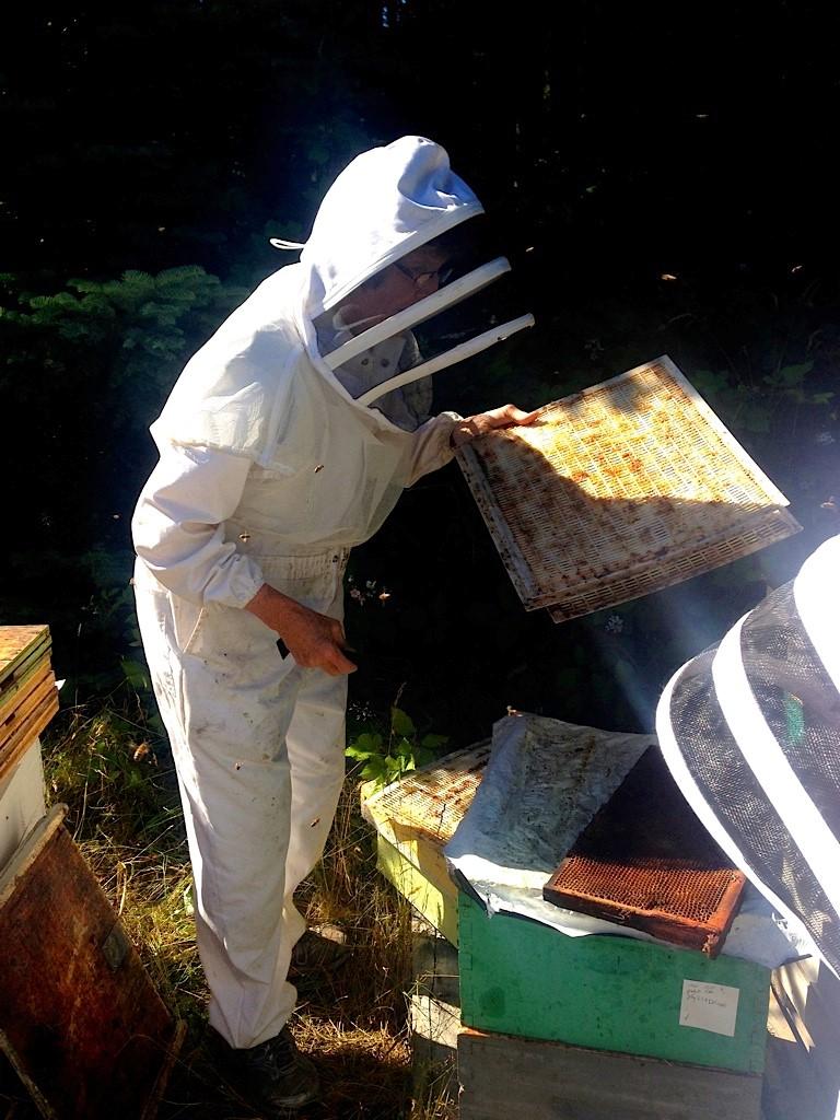 Liz Huxter, Bee IPM